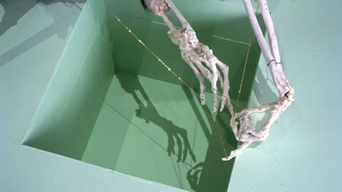 Profile on artist: David Altmejd