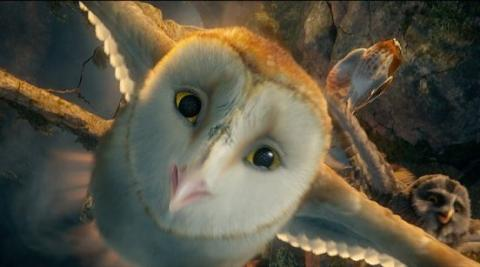 Top 10 Fictional Movie and TV Owls