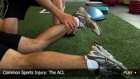 Common Sports Injury: The ACL
