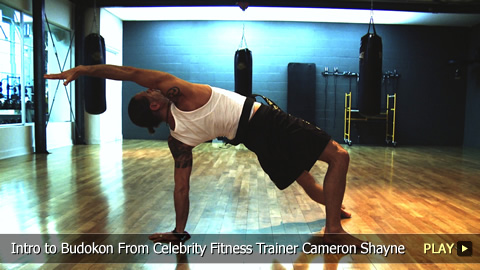 Introduction to Budokon From Celebrity Fitness Trainer Cameron Shayne