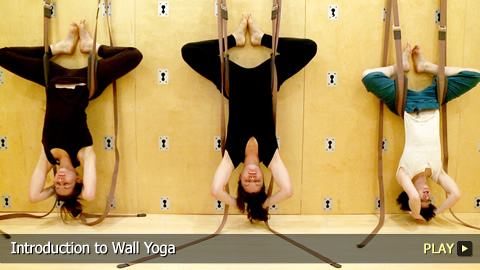 introduction to wall yoga  watchmojo