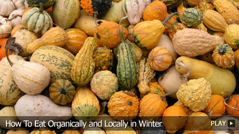 How To Eat Organically and Locally in Winter