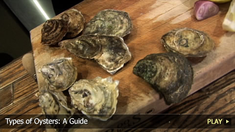 Types of Oysters: A Guide