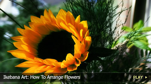 Ikebana Art: How To Arrange Flowers
