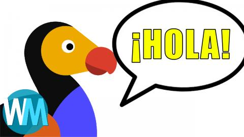Taking On The Spanish Market: The Dodo Goes Español - size of Hispanic audience? - Mojo Talks
