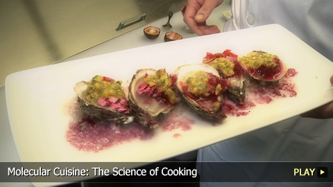 Molecular Cuisine: The Science of Cooking