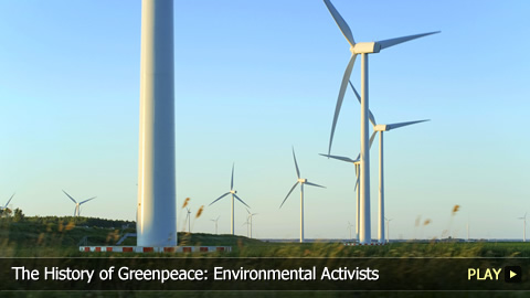 The History of Greenpeace: Environmental Activists