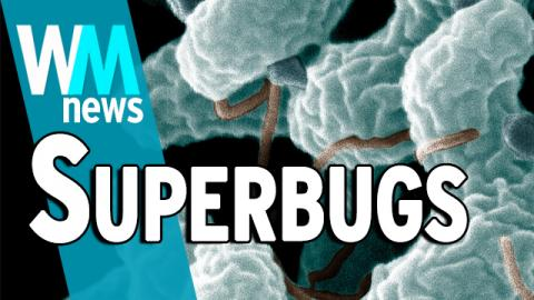10 Superbugs and Antimicrobial Resistance Facts - WMNews Ep. 49