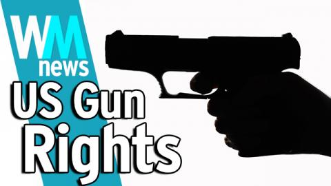 10 USA Gun Rights Debate Facts - WMNews Ep. 33