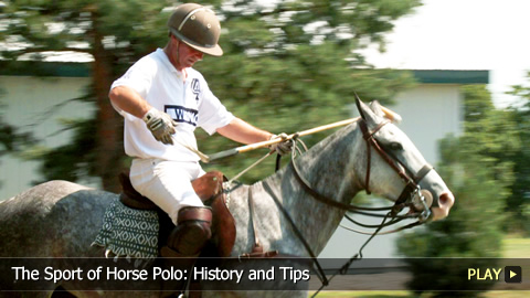 The Sport of Horse Polo: History and Tips