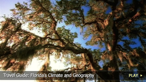 Travel Guide: Florida's Climate and Geography