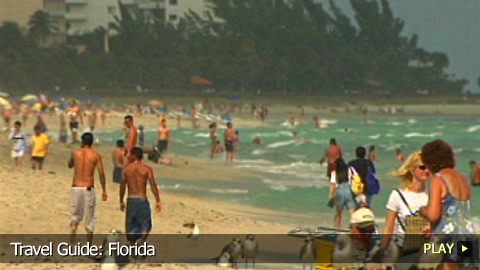 Travel Guide: Florida