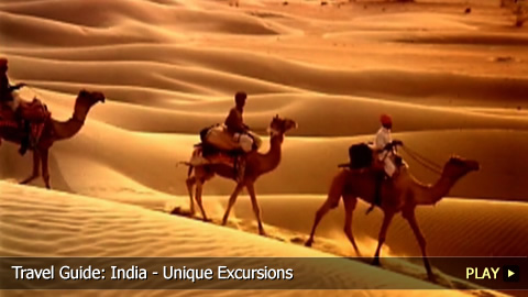Travel Guide: Unique Activities To Do in India