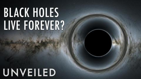 Do Black Holes Die? | Unveiled