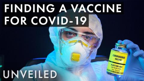 How Long Do Vaccines Take To Make? | Unveiled