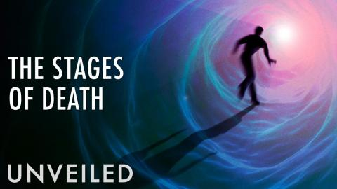What Happens After We Die? | Unveiled