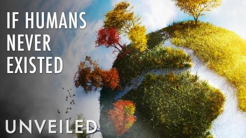 What If Earth Never Had Humans? | Unveiled