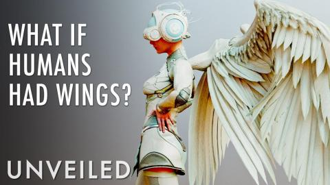 What If Humans Could Fly? | Unveiled