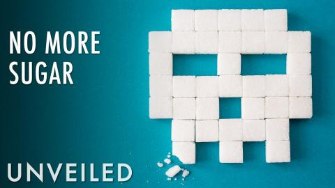 What If the World Ran Out Of Sugar? | Unveiled