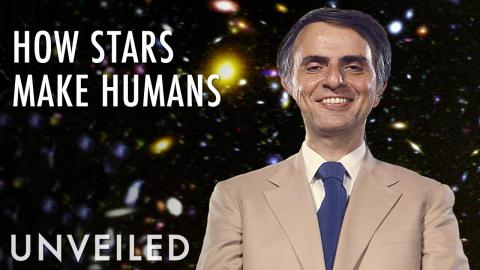 Why We're All Made Of Stardust | Unveiled