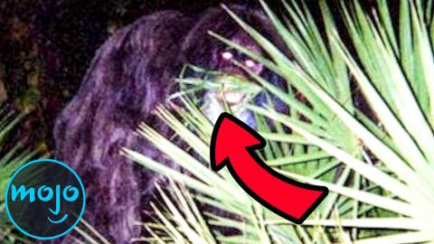 Top 10 Famous Real Life Monsters Caught on Camera