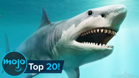 Top 20 Extinct Animals