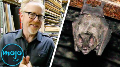 Top 10 Myths We NEED to See MythBusters Test