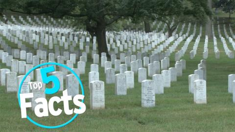 Top 5 Facts About Exotic Funeral Rituals