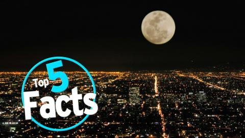Top 5 Facts about the Moon