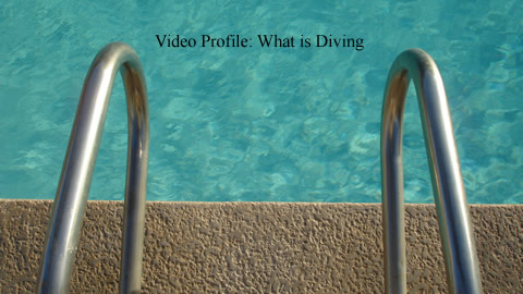 Learn All About Diving