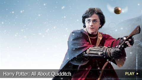 Harry Potter All About Quidditch Watchmojo Com