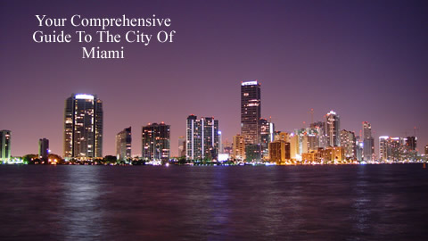 Travel To The City of Miami