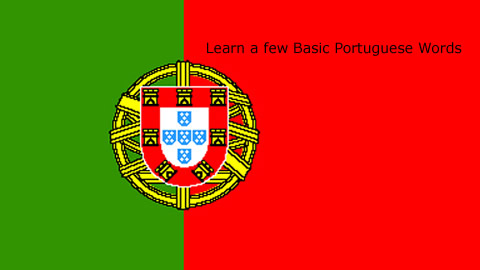 Learn Basic Portuguese Words