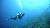 Scuba Diving: Introduction to Underwater Breathing
