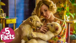 "Top 5 Facts About ""The Zookeeper's Wife"""