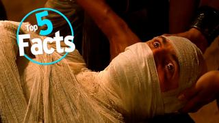 Top 5 Facts about Mummies