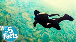 Top 5 Record-Breaking Facts About Skydiving