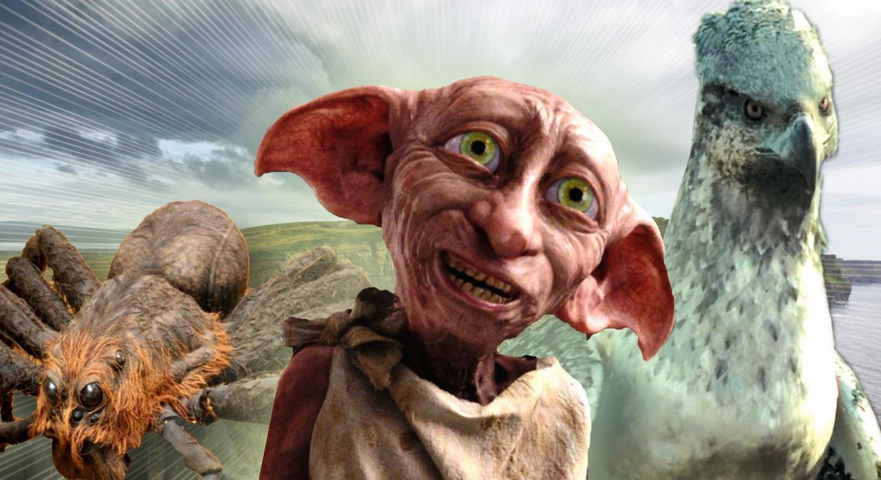 Harry Potter Fabelwesen Film