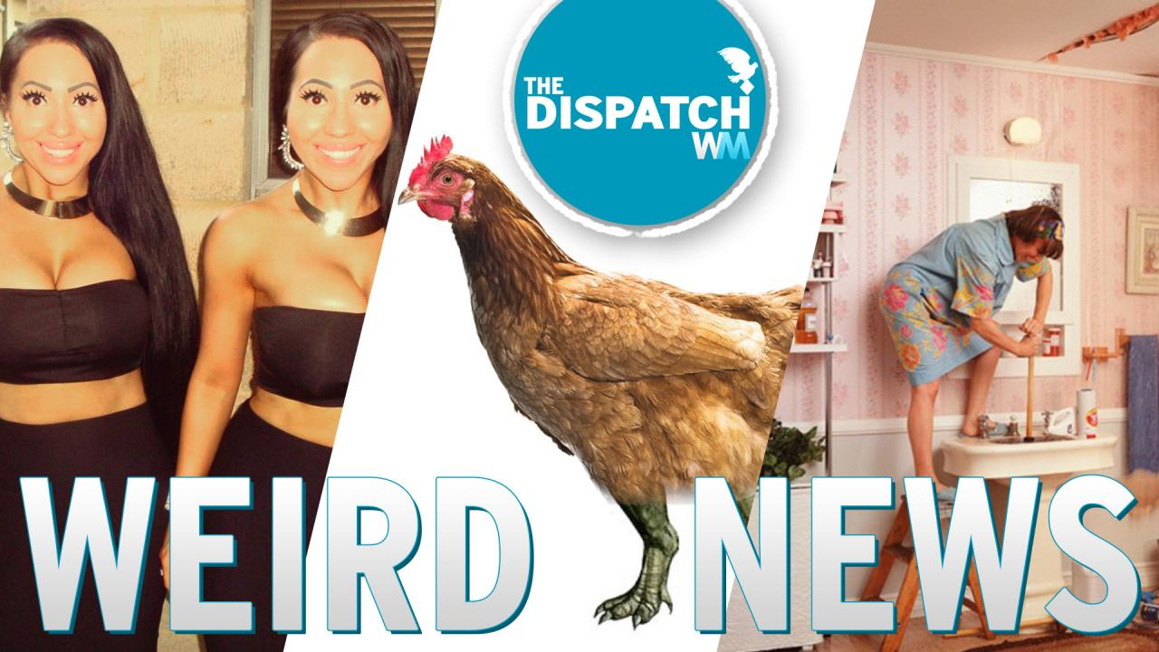 Partner Sharing Twins, Dino Legs & Exploding Toilets: The Dispatch Ep. 19
