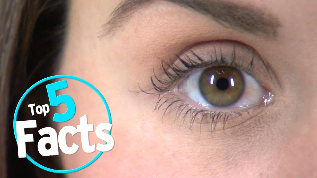 Top 5 Facts About Your Unreliable Eyeballs